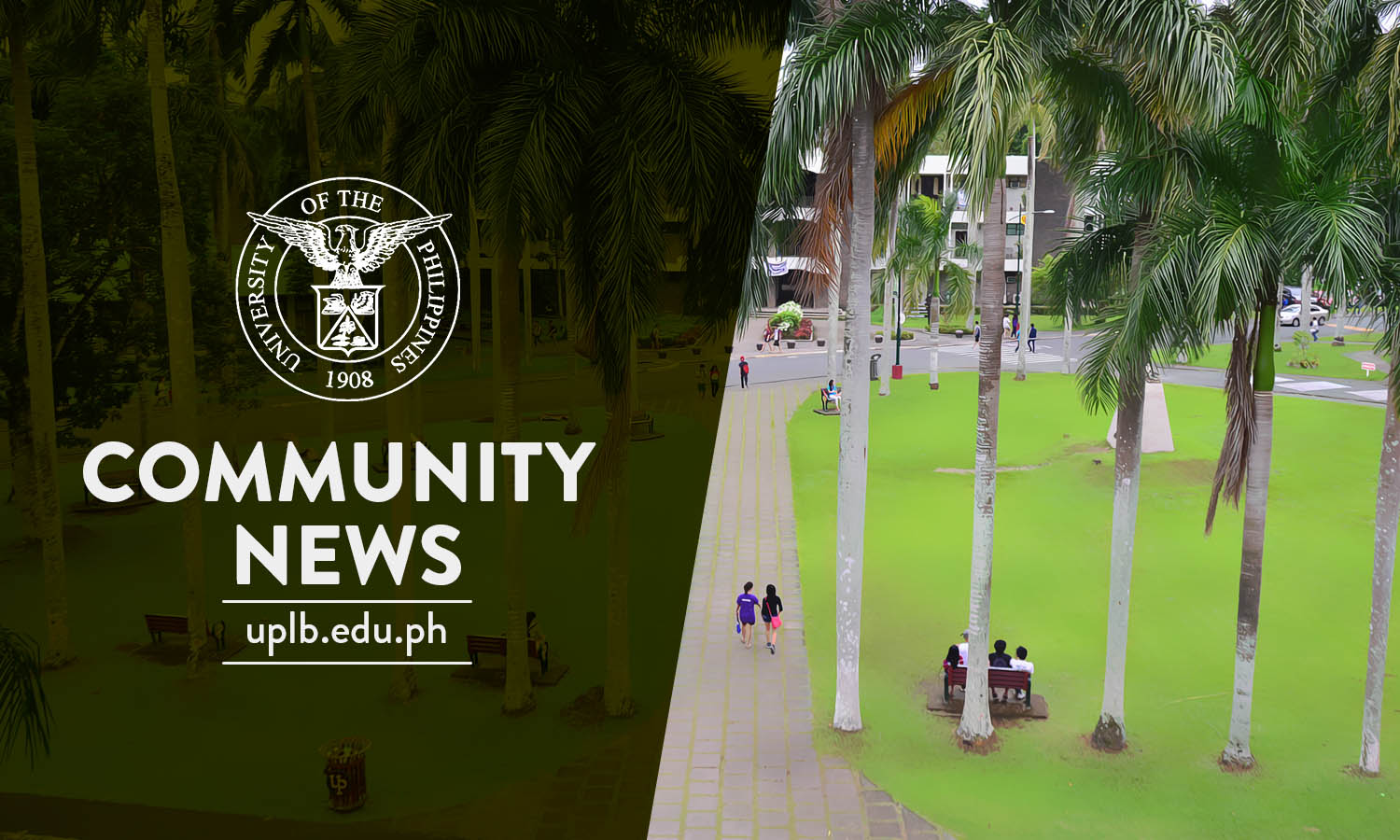 """""""OCG Cares' Kumustahan"""" ensures psychosocial support to UPLB students in the midst of COVID-19 pandemic"""