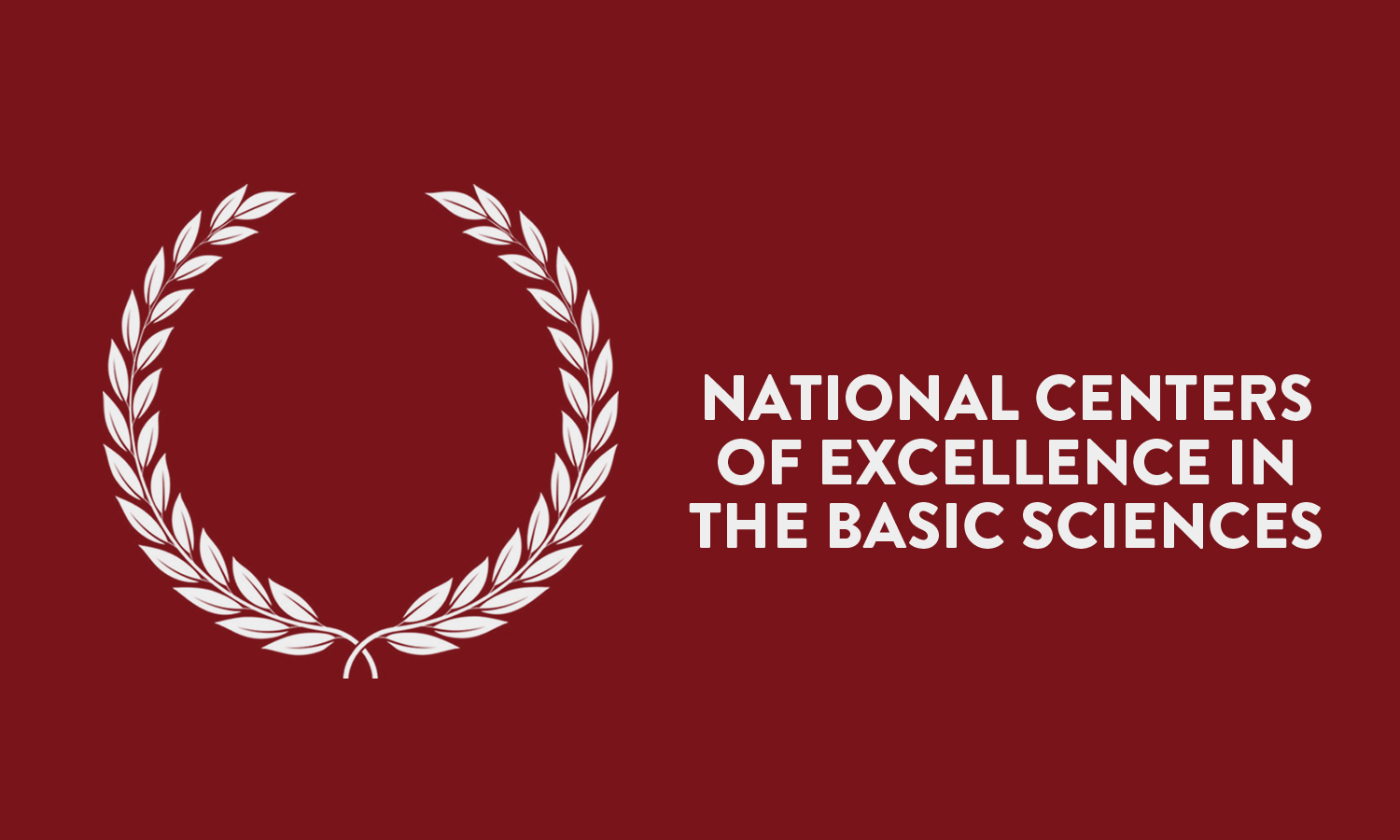 National Centers of Excellence in the Basic Sciences