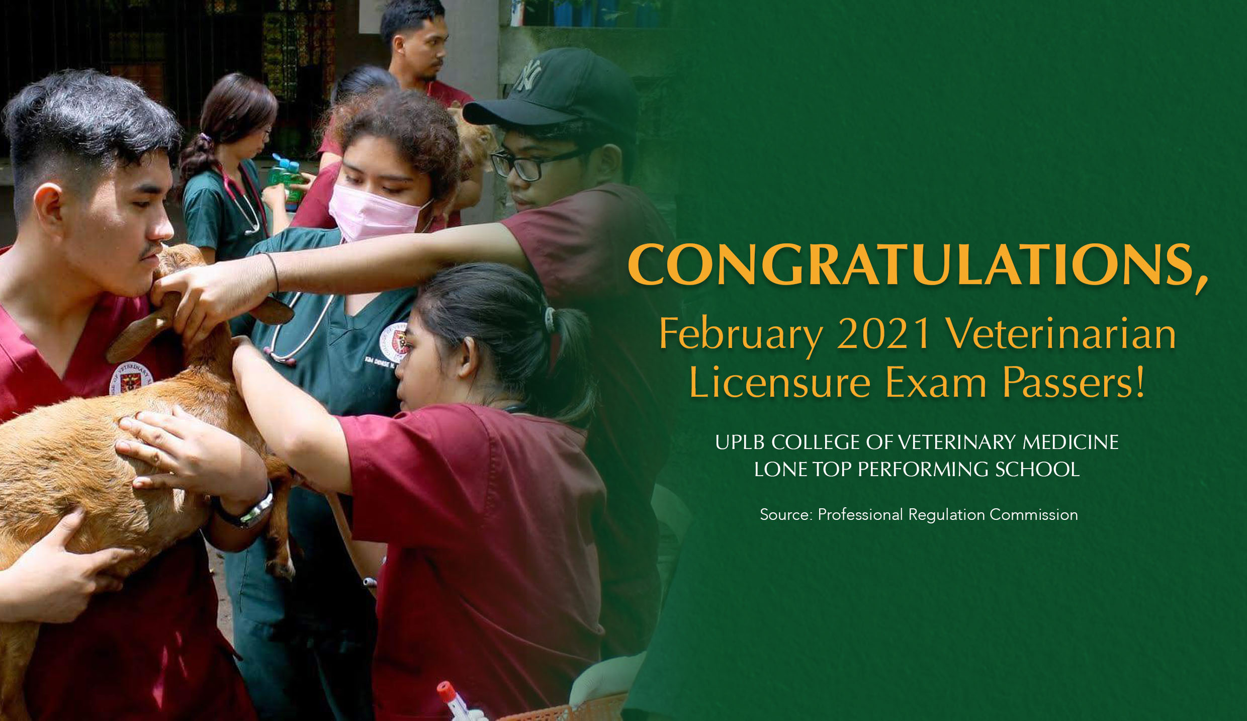 UPLB aces veterinary medicine exam