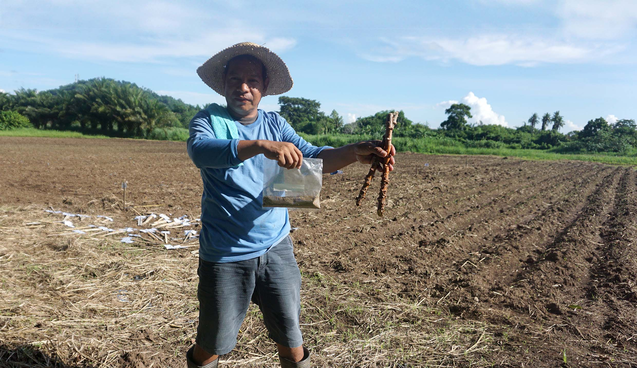 UPLB-BIOTECH biofertilizers and technologies to boost urban agriculture in Cabuyao City