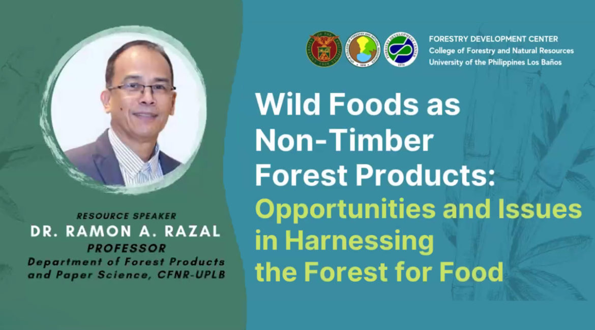 Forest foods promoted for PH food security in webinar