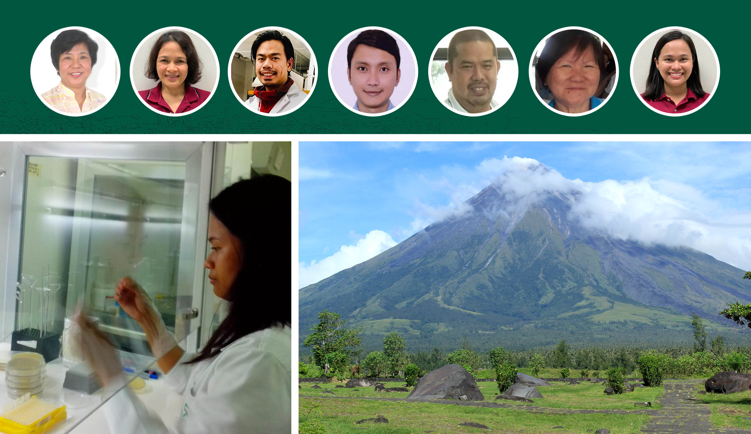 UPLB research yields potential cure for cancer